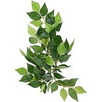 Exo Terra Plastic Terrarium Plant, Small Ficus