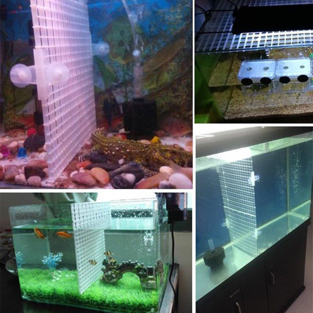 SDYDAY Bandeja separadora para acuario con aislamiento, filtro inferior transparente