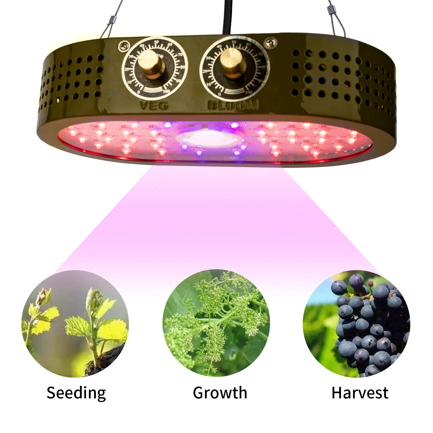 COB Grow Light 1100W Full Spectrum Lamp, Indoor Grow Lights for Veg and Flower Plants, Double Adjustable Knobs Plant Light for Greenhouse Double-chip 10W LEDs ,Benflor