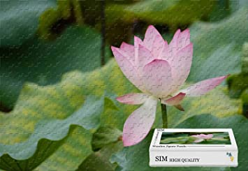 Amazon Wooden Puzzle In Box Pink Lotus Flower Green Leaves