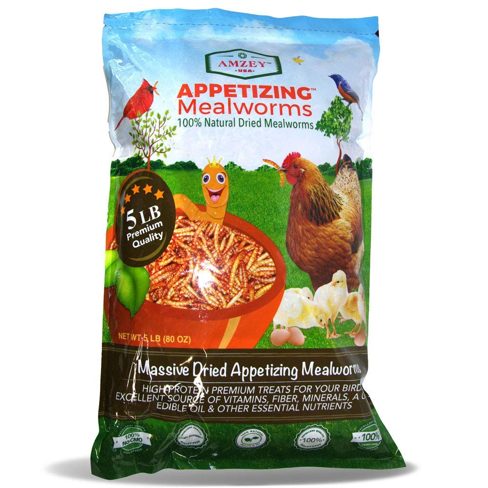Appetizing Mealworms 5lbs-100% Non-GMO Dried Mealworms - High-Protein Meal Worm Treats -Perfect for Your Chickens,Ducks,Wild Birds,Turtles,Hamsters,Fish,and Hedgehogs ... by Appetizing Mealworms
