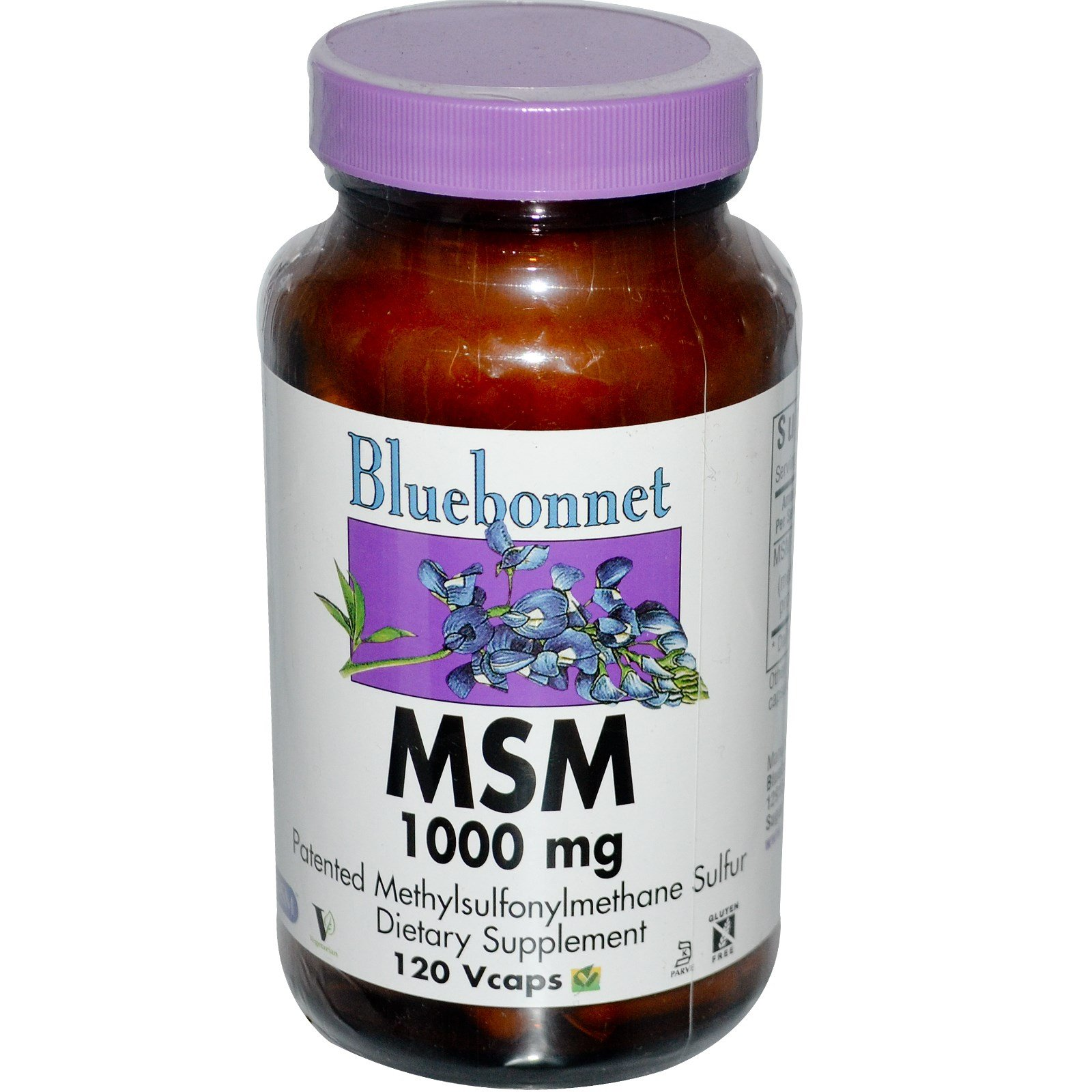 Bluebonnet Nutrition, MSM, 1000 mg, 120 Vcaps - 3PC