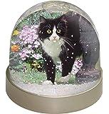 Advanta Schwarz und Weiß Katze in Garten Snow Dome Globe Geschenk, Mehrfarbig, 9,2x 9,2x 8cm