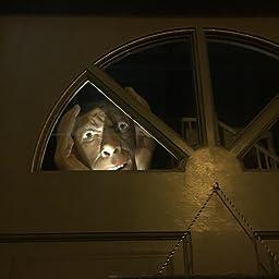 Amazon.com: Halloween Scary Peeping Tom True To Life Window Prop: Toys
