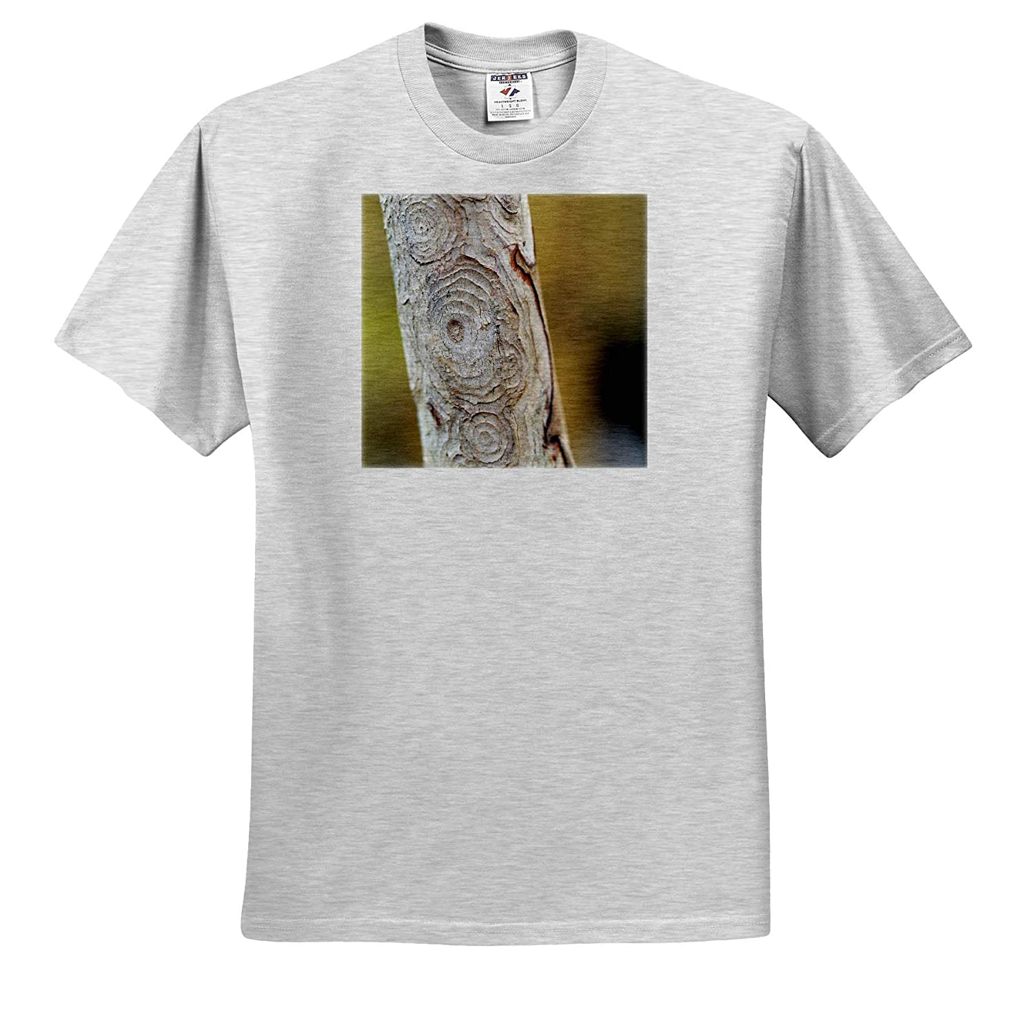 ts/_315554 - Adult T-Shirt XL 3dRose Stamp City Nature Macro Photograph of The Circles of bark of a Crepe Myrtle Tree