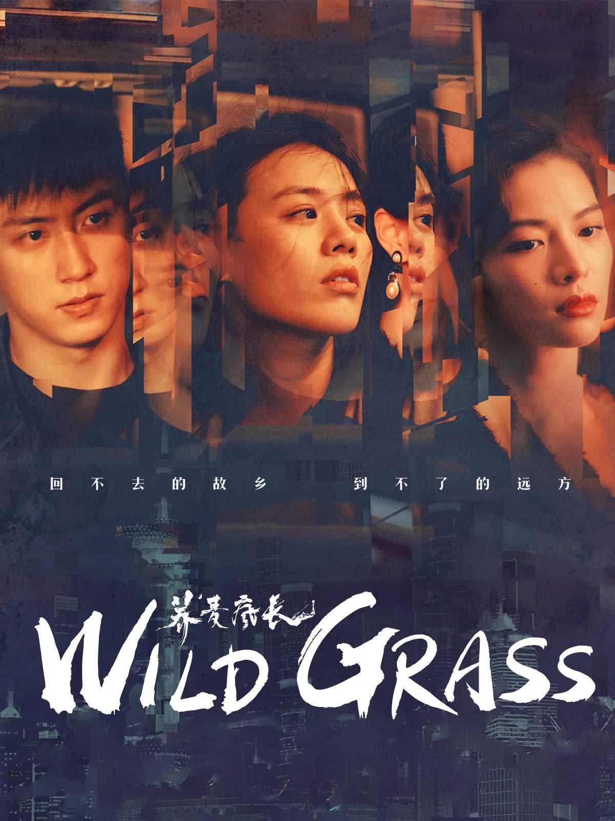 Wild Grass on Amazon Prime Video UK