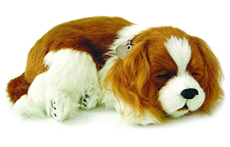 amazon com perfect petzzz cavalier king charles plush toys games