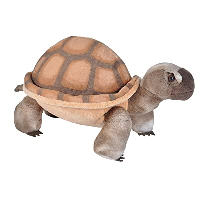 Wild Republic Desert Tortoise Plush, Stuffed Animal, Plush Toy, Gifts for Kids, Cuddlekins 12 Inches: Toys & Games