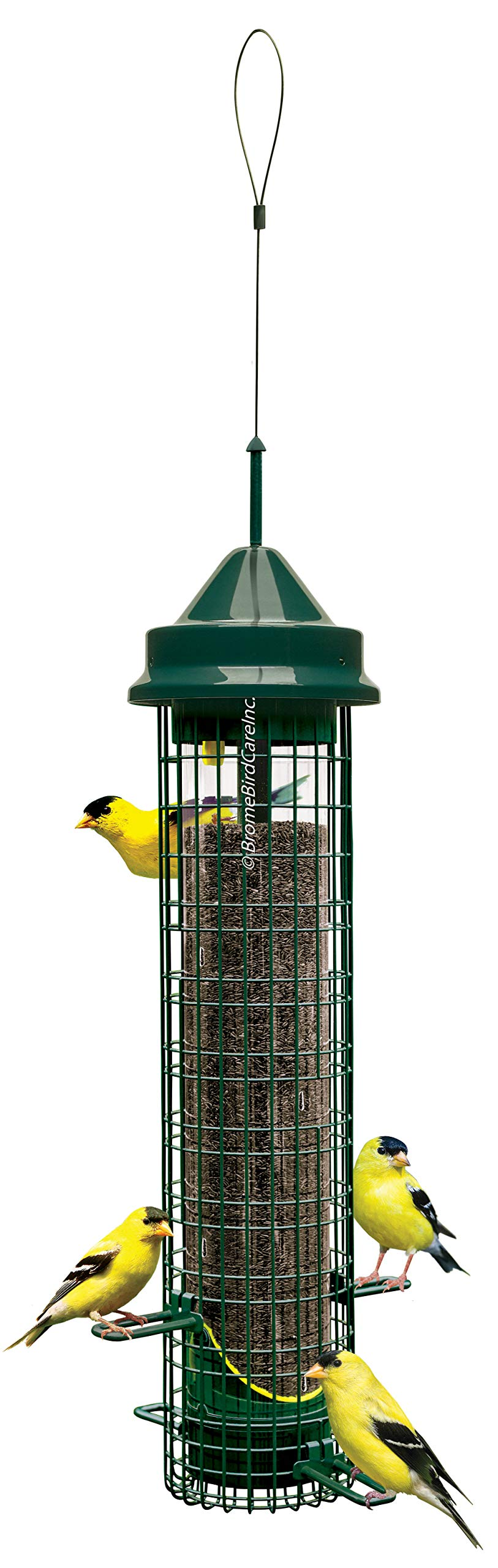 Squirrel Buster Finch Squirrel-proof Bird Feeder w/4 Metal Perches & 8 Feeding Ports, 2.4-pound Thistle/Nyjer Seed Capacity by Brome
