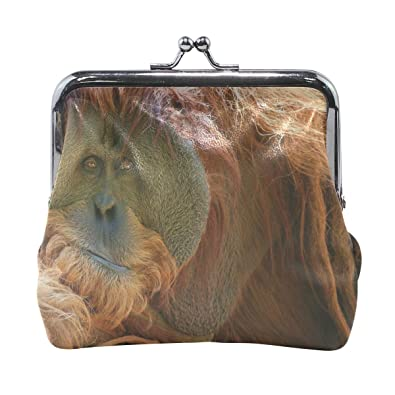 Amazon.com: Rh Studio Monedero monedero Orangutan Monkey ...