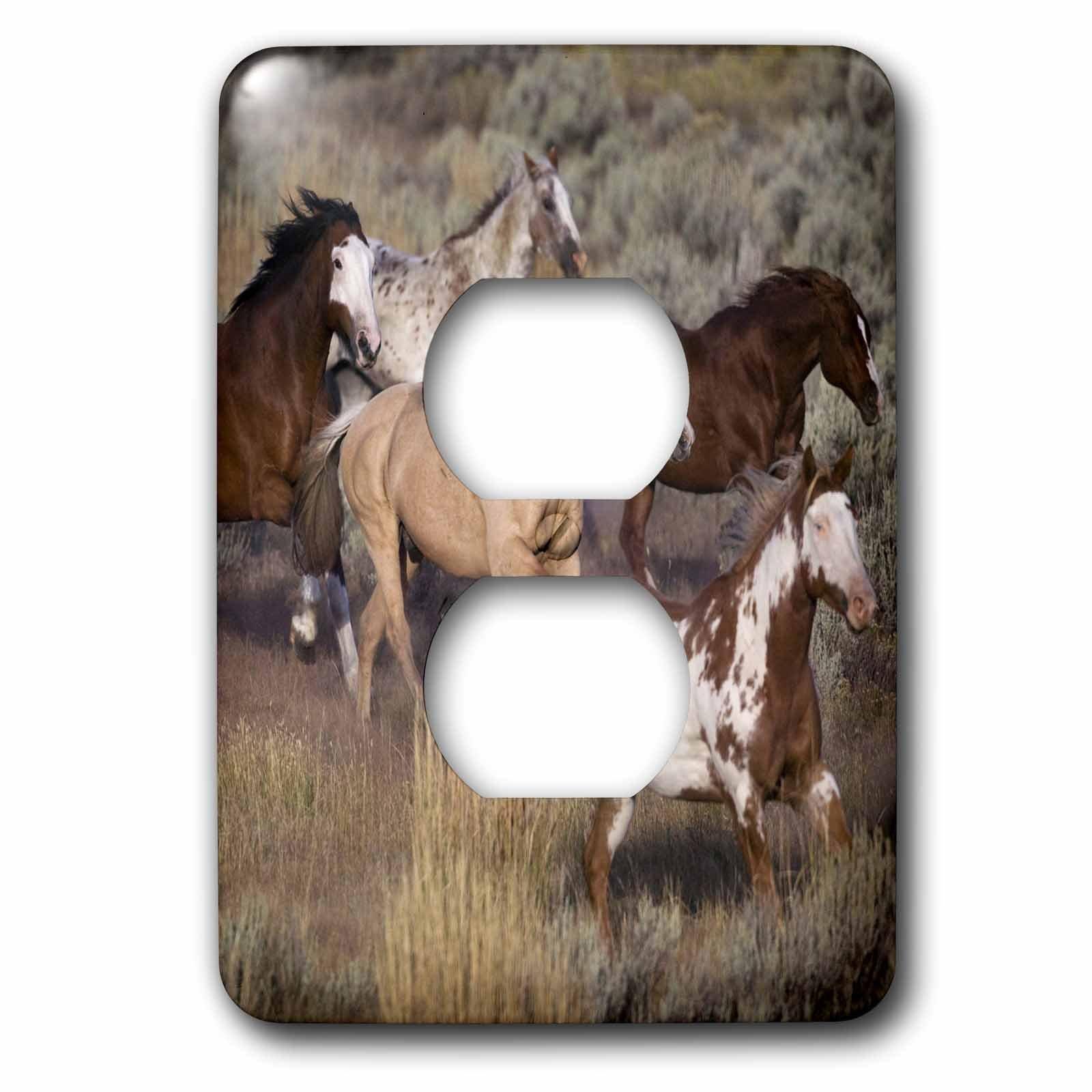 3dRose LLC lsp_93557_6 Usa, Oregon, Seneca, Ponderosa Ranch Horses Us38 Bja0382 Jaynes Gallery 2 Plug Outlet Cover