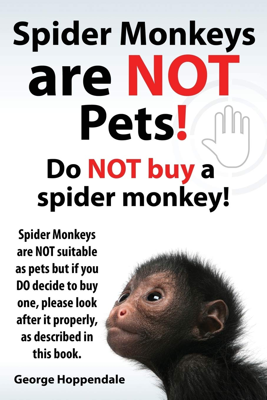 Spider Monkeys Are Not Pets Do Not Buy A Spider Monkey Spider Monkeys Are Not Suitable As Pets But If You Do Decide To Buy One Please Look After It Amazon In Hoppendale