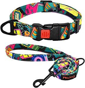Didog Fashion Pattern Dog Collar & 4ft Leash with Safety Locked Buckle & Sturdy D-Ring, Adjustable Printed Dog Collar for Small Medium Large Dogs
