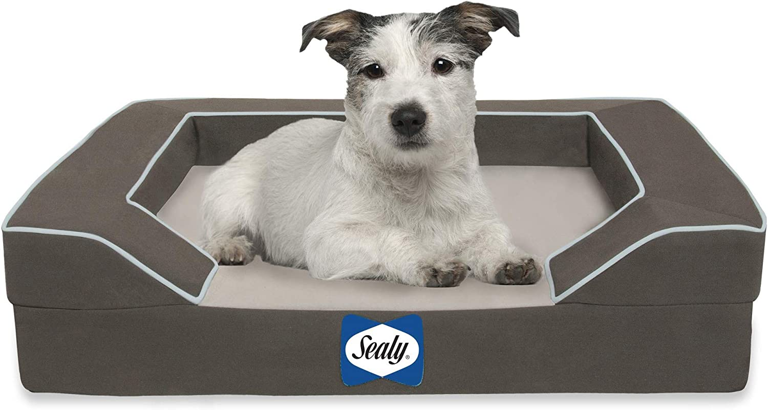 Sealy Dog Bed with Quad Layer Technology, Small, Modern Gray : Pet Beds : Pet Supplies