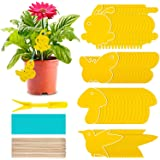 60 Pack Fruit Fly Traps Indoor Gnat Trap, Sticky Fly Traps Fungus Fly Trap and Yellow Sticky Traps, Fungus Gnat Killer for In