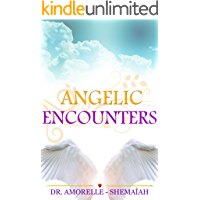 Angelic Encounters (English Edition)