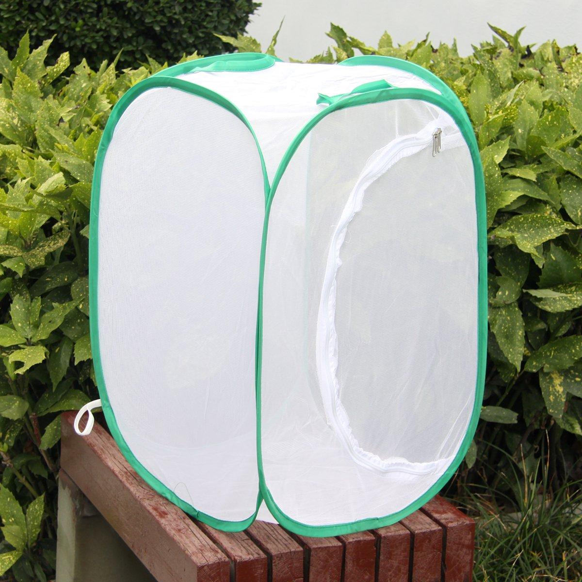 amazon com auspa insect and butterfly habitat terrarium pop up