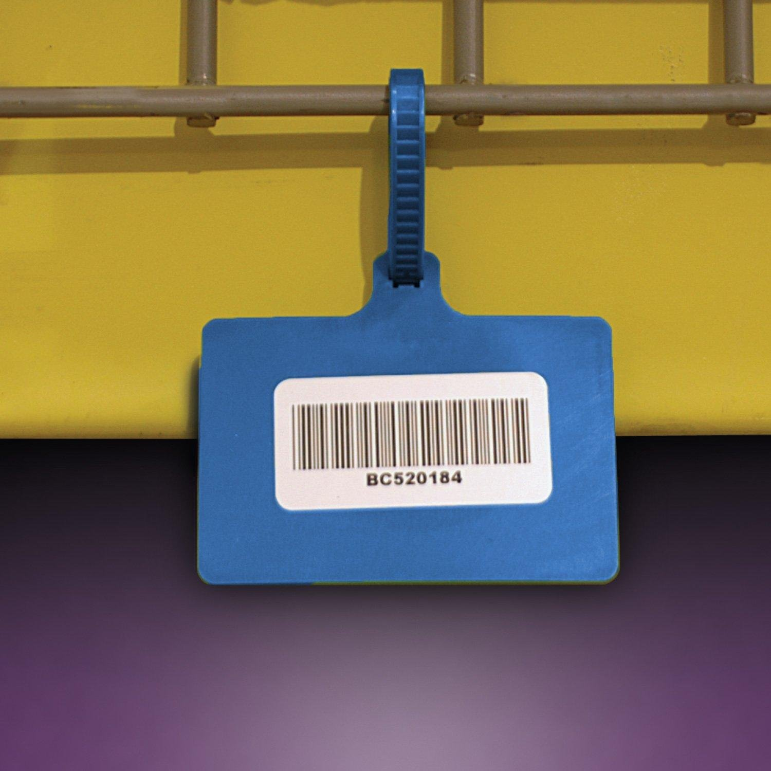Plastic Color-Coded One-Piece Tag, Blue - 5-1/2''