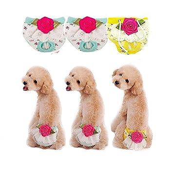 3 piezas lillypet® Perro Cachorro pañal Sanitarias Pantalones Ropa interior Panty mujer niña para razas
