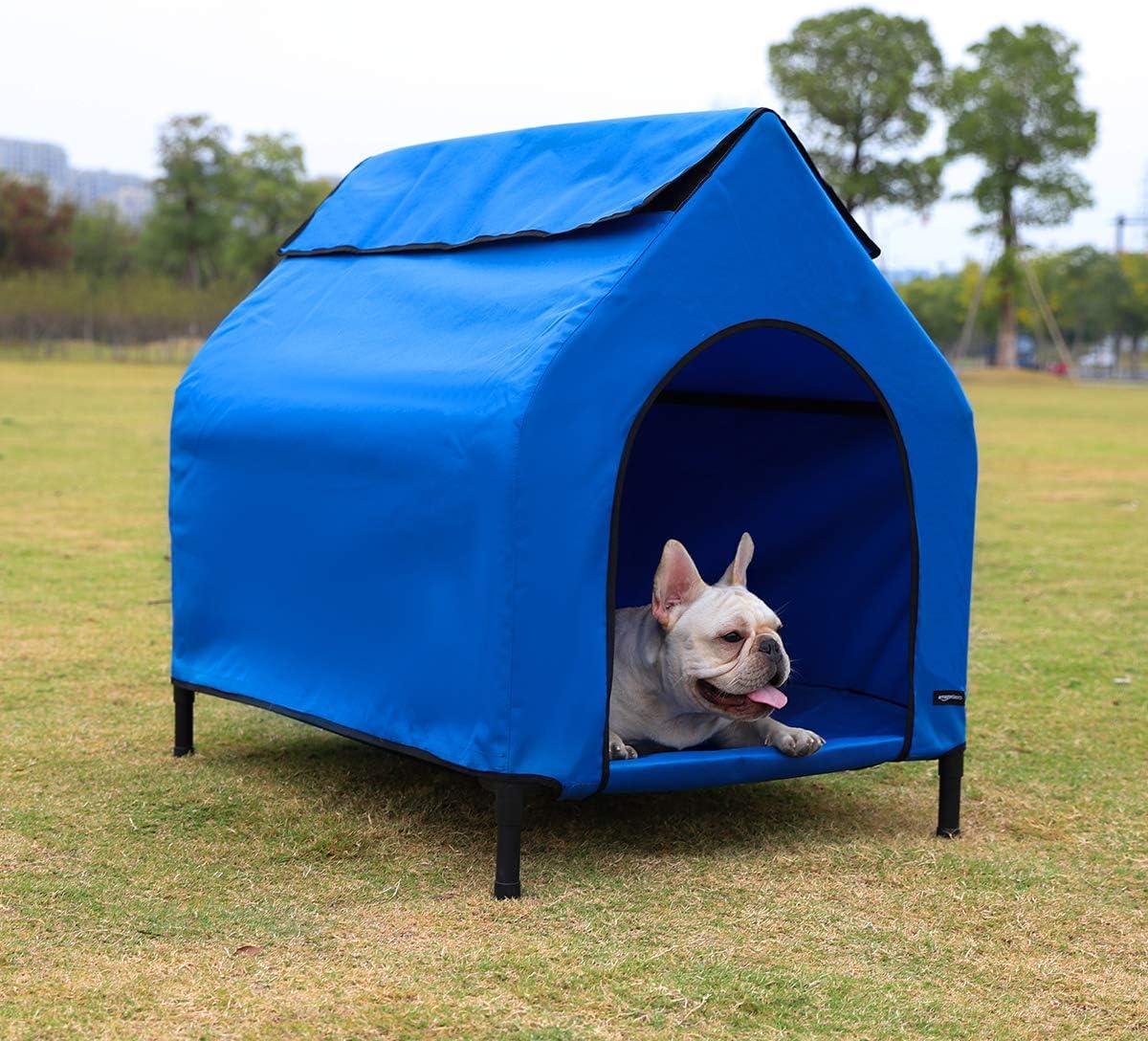 Amazon Basics - Caseta para mascotas, elevada, portátil, pequeña, azul