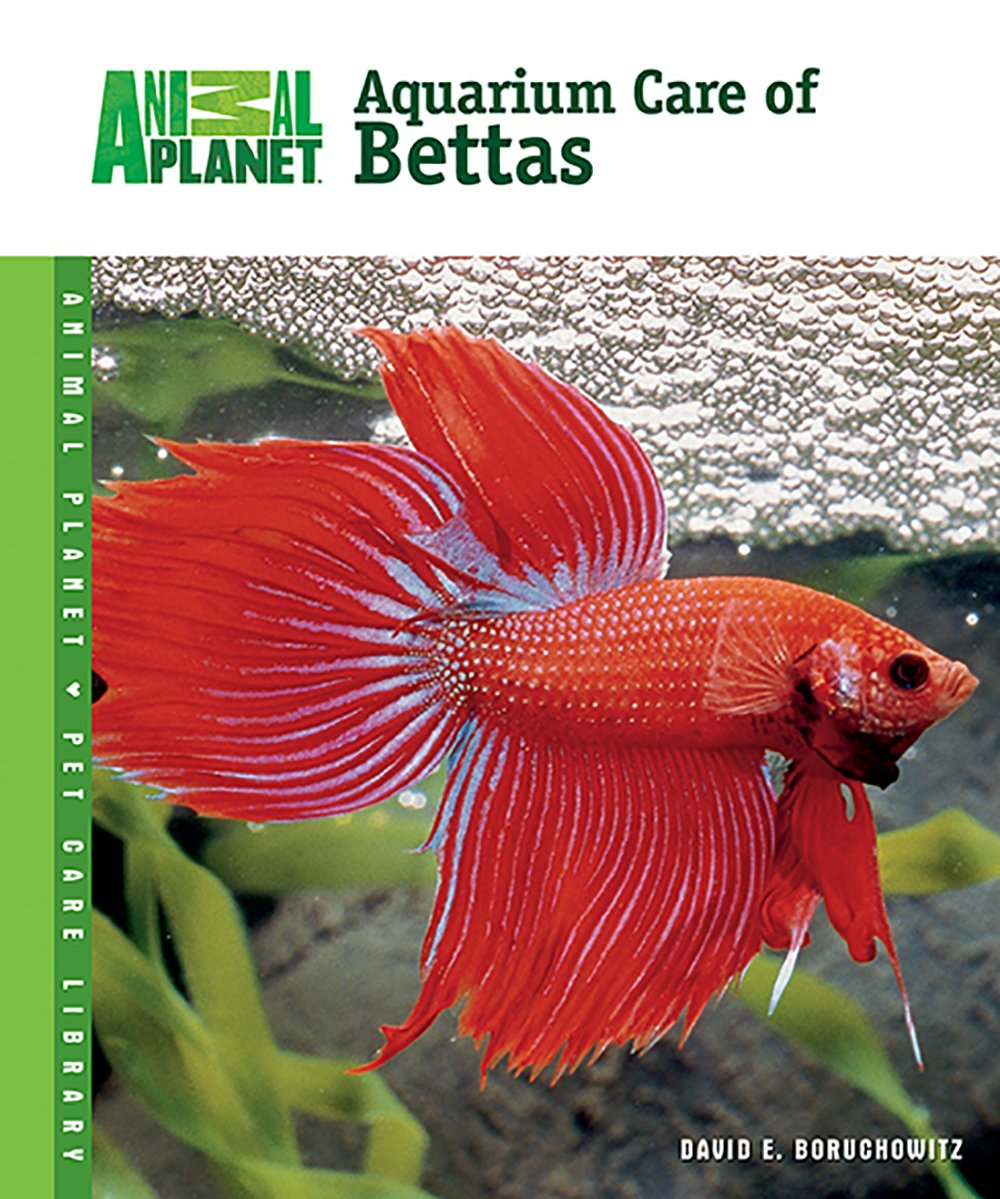Aquarium Care of Bettas (Animal Planet® Pet Care Library): David E ...