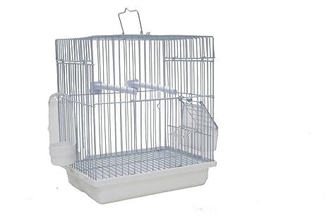 Sky Pet Jaula de transporte para pájaros pequeña de MALI: Amazon ...