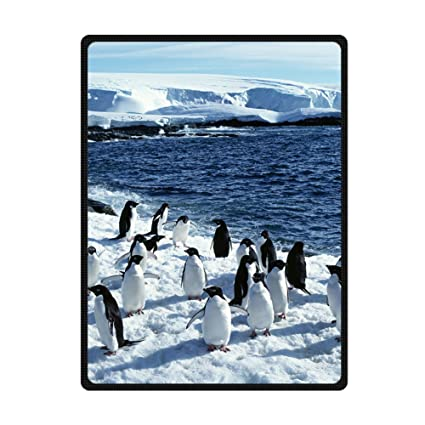 Custom Real Penguins Snow Blue Sea Supersoft Throw Fleece Blanket 58quot