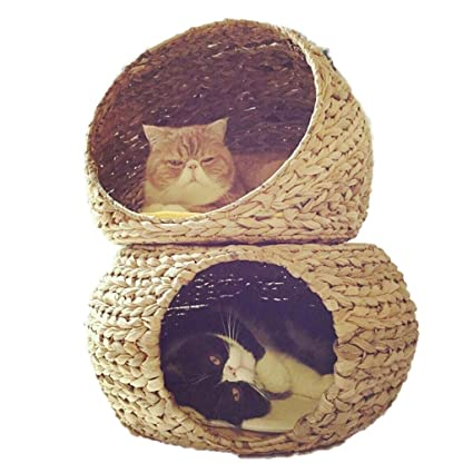 Suministros para camas Pet Nest Cat litera Verano Gato Cama Lavable ...