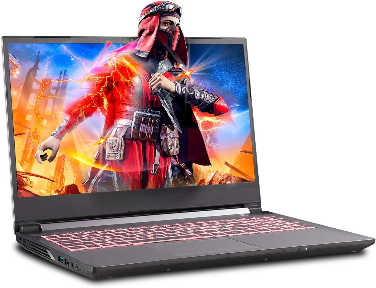Sager NP7856 15.6-Inch Thin Bezel FHD 144Hz Gaming Laptop, Intel i7-9750H, RTX 2060 6GB, 32GB RAM, 1TB NVMe SSD + 2TB FireCuda SSHD, Windows 10