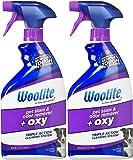 Woolite Pet Stain & Odor Remover Carpet Cleaner + Oxygen - 22 oz - 2 pk