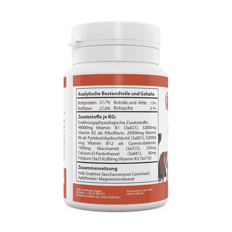 CaniComplete - Complejo de Vitamina B para Perros, Gatos: B1 ...