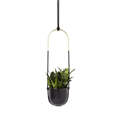 Umbra Bolo Hanging Planter: Home & Kitchen