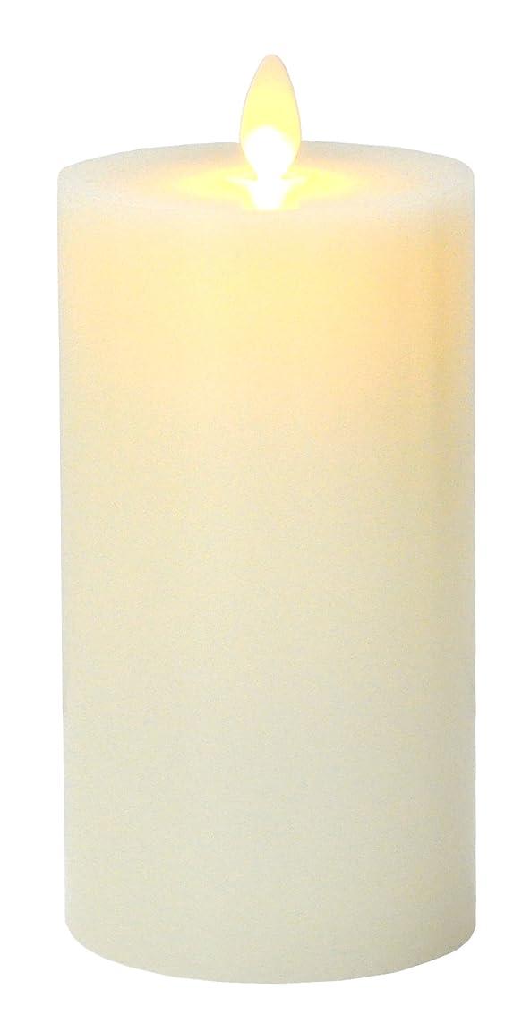 トースト雨無謀LEDキャンドルライト 本物蝋使用 3点セット ゆらゆら揺れる リモコン付き タイマー 明るさ調整付き 高級感 クリスマス パーティー 結婚式に最適