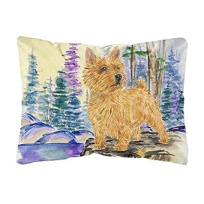 Caroline's Treasures SS8011PW1216 Norwich Terrier Decorative Canvas Fabric Pillow, 12H x16W, Multicolor : Garden & Outdoor