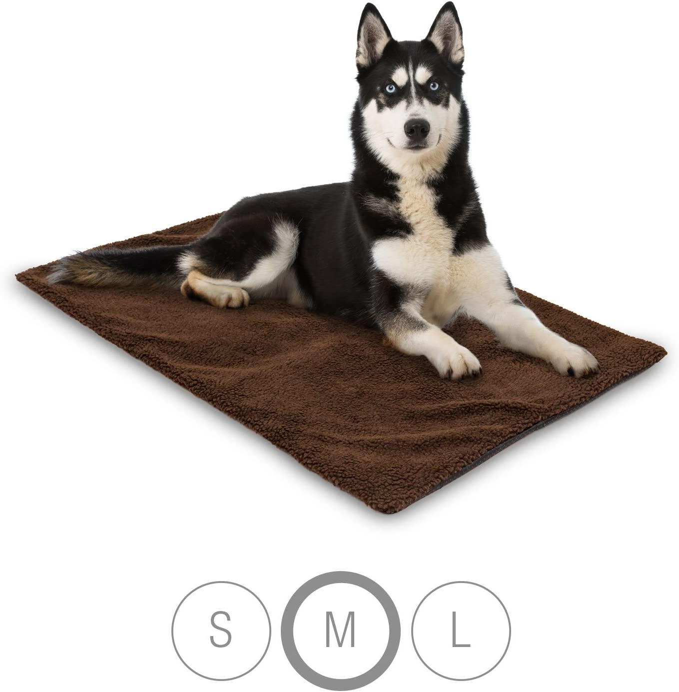 Couvertures pour chiens