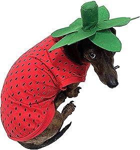 Midlee Strawberry Dog Costume