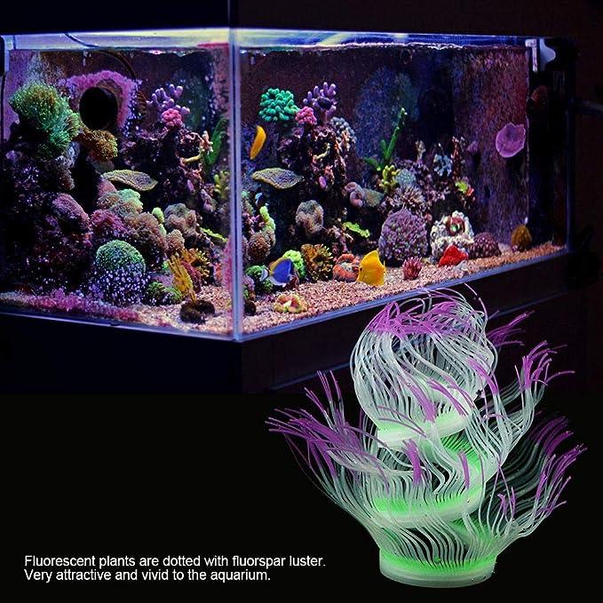 Fdit Socialme-EU Adorno de Plantas Vivid Artificial Coral para Acuario Submarino Pez Tanque Jardin Acuarios y Peceras(Púrpura): Amazon.es: Productos para ...