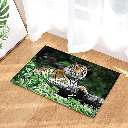 Fdswdfg221 Wild Animal Bath Teppiche Von Winter White Tiger Jagd Im