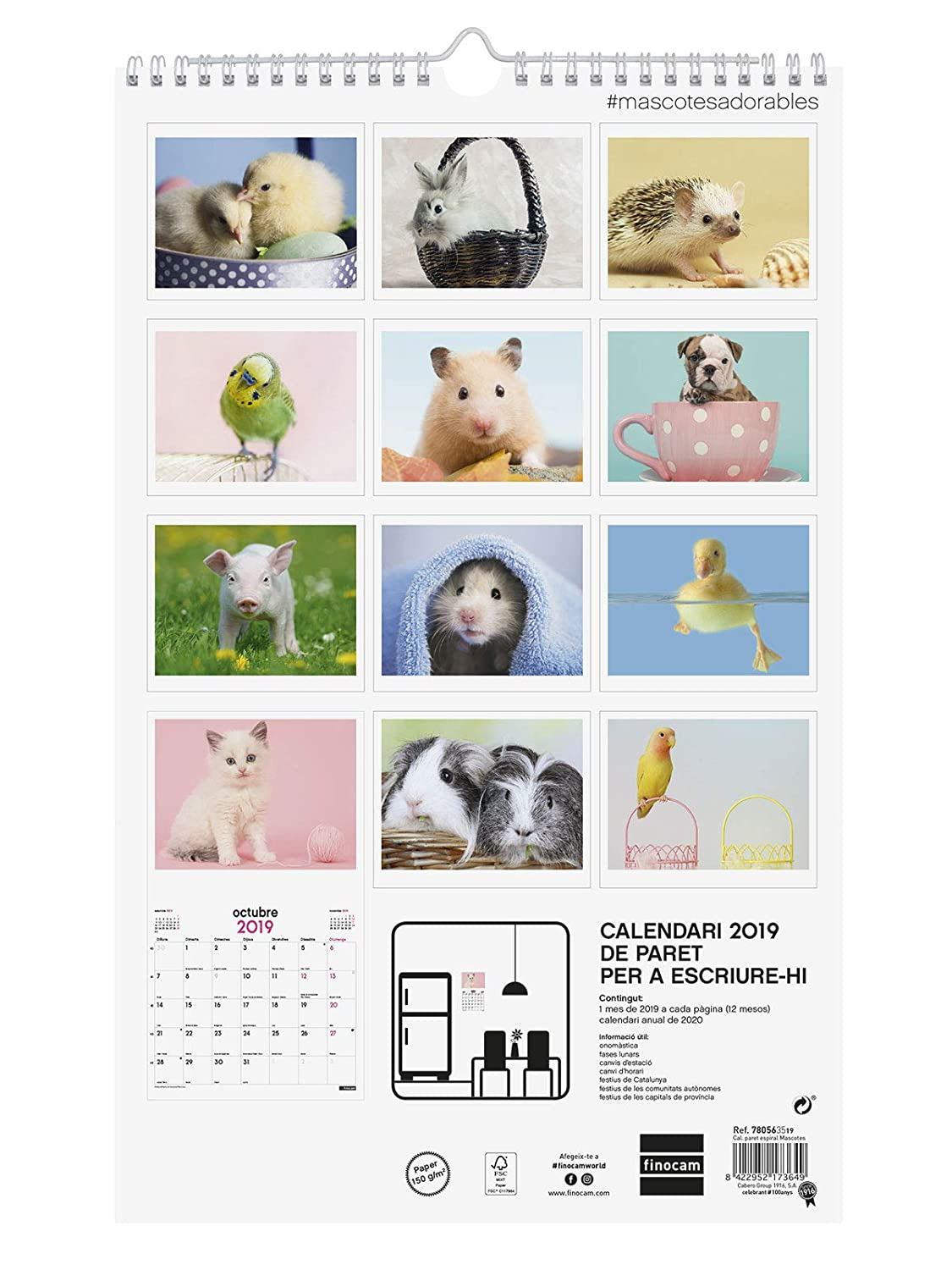 Calendario Con Onomastico 2019.Finocam 780563519 Calendario Da Parete 2019 Amazon It