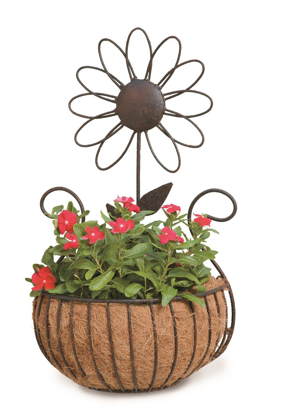 Deer Park Ironworks WB135 Daisy Wall Basket with Cocoa Moss Liner