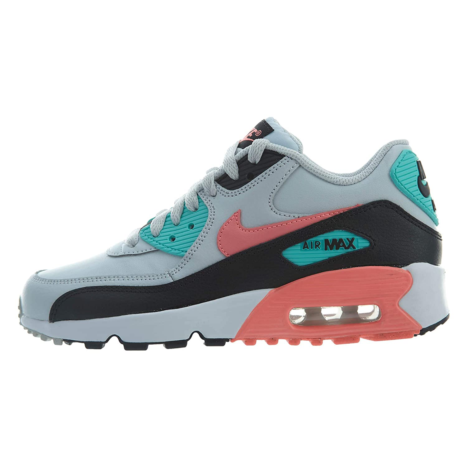 a8cfbfc82c6 Amazon.com: Nike Air Max 90 Leather (Kids): Sports & Outdoors
