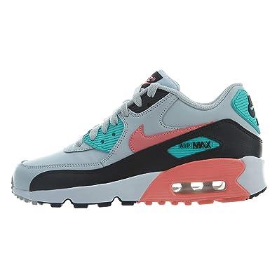online retailer 81af3 40cf5 Nike Air Max 90 Leather (Kids)