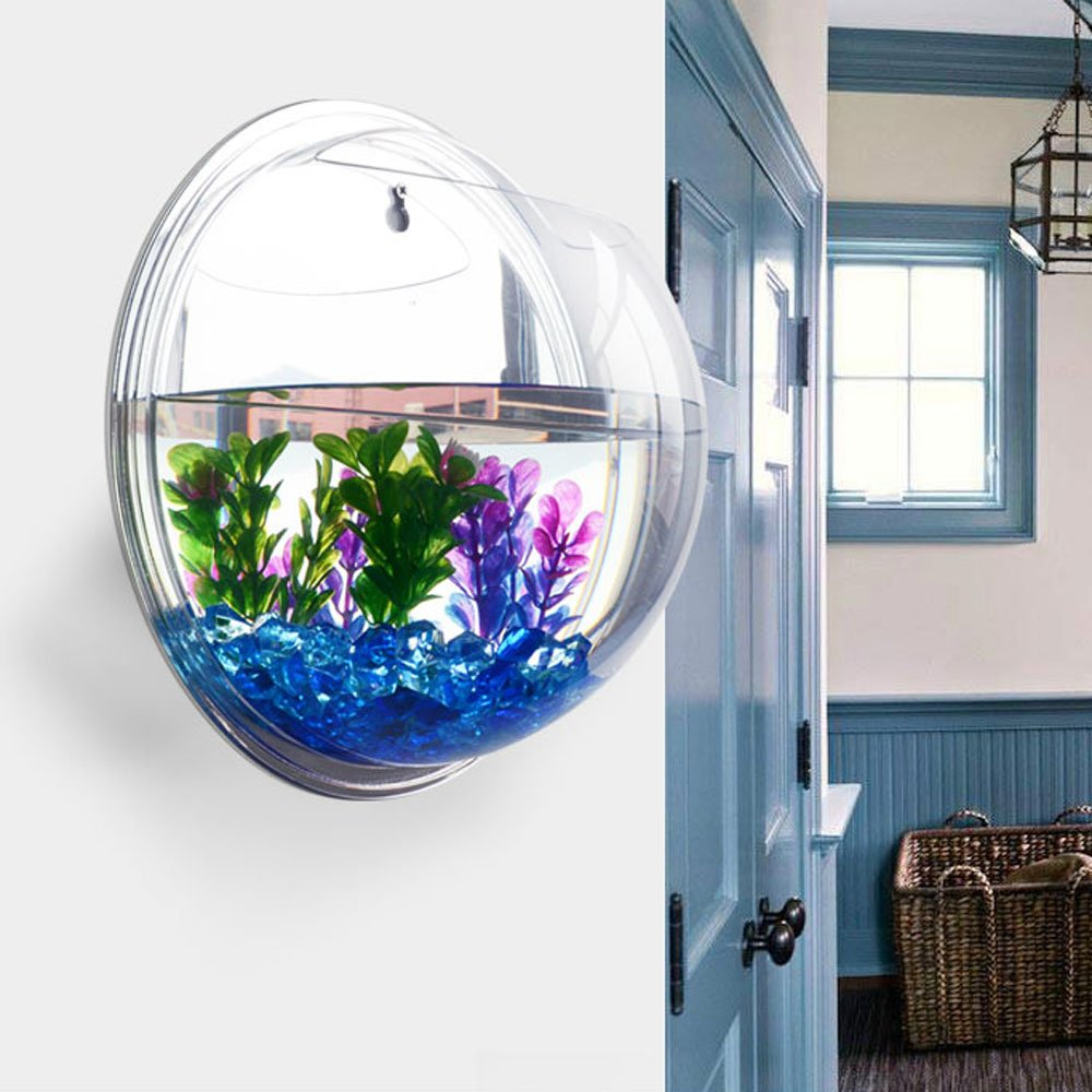 Amazon.com : New Arrival Wall-mounted Hanging Acrylic Fish Tank Aquarium Bubble Bowl Plant Pot Modern Home Decoration : Everything Else