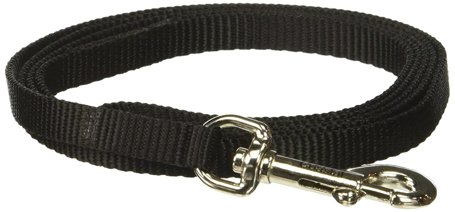 Coastal Pet Products DCP304Black Nylon Collar Lead for Pets, 3/8-Inch by 4-Feet, Black TopDawg Pet Supply 764020