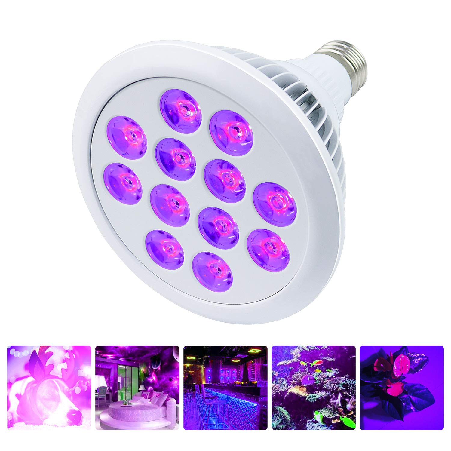 UV LED Black Light Bulb,Mrhua Bulb E26 E27 PAR38 Super Bright 24W UV Blacklight for Home Party, Stage Lighting,Neon Glow, Blacklight Party, Stage Lighting, Fluorescent Effect Wedding Lighting Mrhua LED