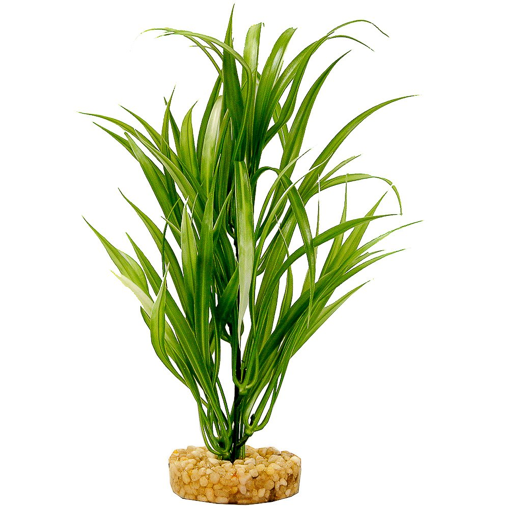 Blue Ribbon Pet Products ABLCB2012GR Sword Plant for Aquarium, Green