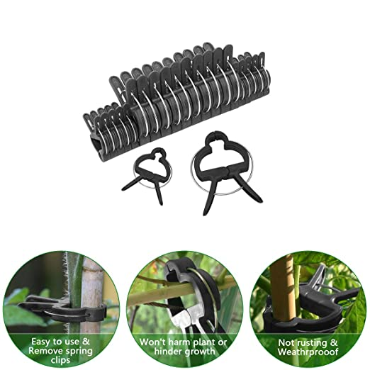 Schone Products (UK) Planta de jardín & flor clips-clamps a apoyo ...