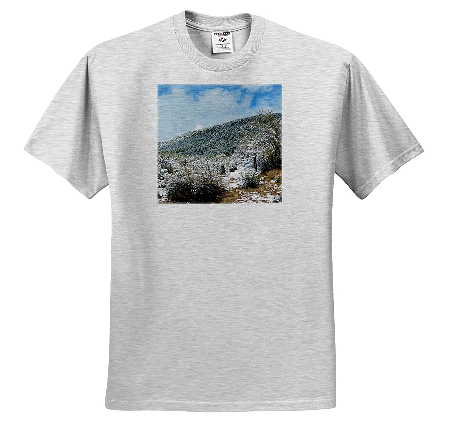 ts/_317881 Snow on a Mountain just Dusted Slightly 3dRose Jos Fauxtographee- Mountain Adult T-Shirt XL