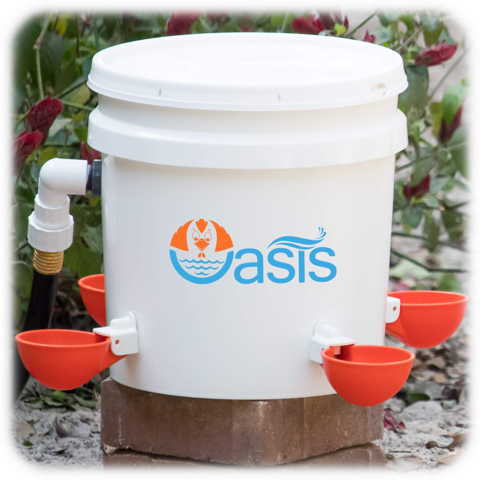 Oasis Chicken Waterer Kit (Bucket NOT Included) | Complete with Oasis Watering Cups, Bucket Float Valve and Drill Bits | 4 Cup Kit (Orange) by Backyard Flock