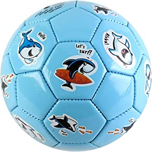 EVERICH TOY Soccer Balls for Toddlers-Baby Ball Game Set for Kids-Sport Ball Toy for Outdoor/Indoor (Size 2 Toddler Soccer Balls,with Pump)